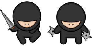 """Are You Ready to Disrupt Your Brand With """"The Ninja Surprise?"""""""